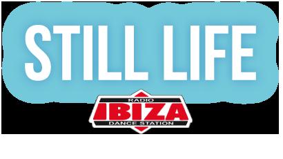 Il mio programma: Still Life.